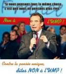 medium_karaoke_Bayrou.jpg