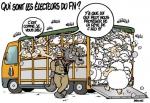 Qui-sont-les-electeurs-du-FN.jpg